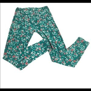 LuLaRoe Poppies Floral Green and Pink Leggings OS